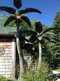 Palm Tree Garden ...